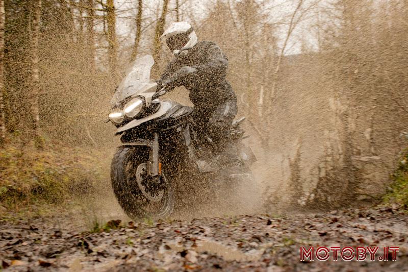 Triumph Motorcycles Tiger 1200 Desert