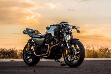 Kin of the Kings Harley-Davidson